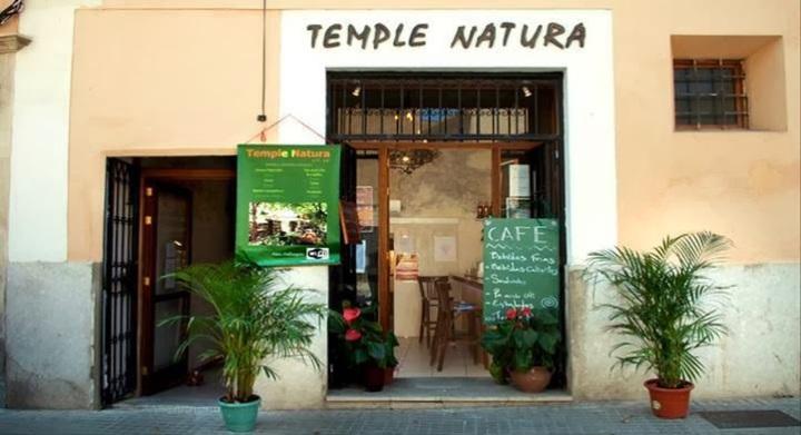 template natura palma